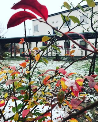 とけて、また降って。 一歩ずつ冬へ。 #川島旅館